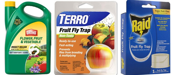 Fruit Fly Pesticides