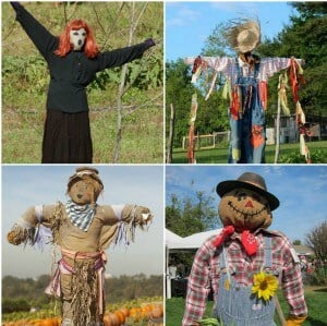 Scarecrows to Scare Pigeons