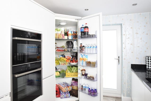 Fridge Pest Control North Brisbane